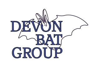 DBG logo 4